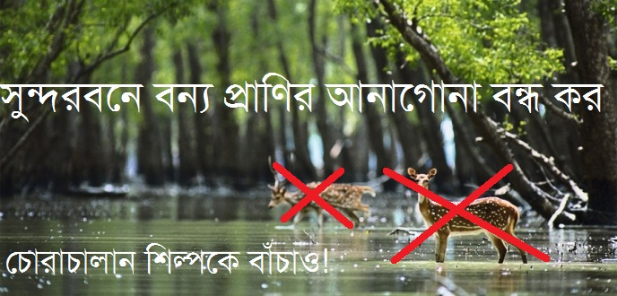 sundarban_from_jalpaiguri